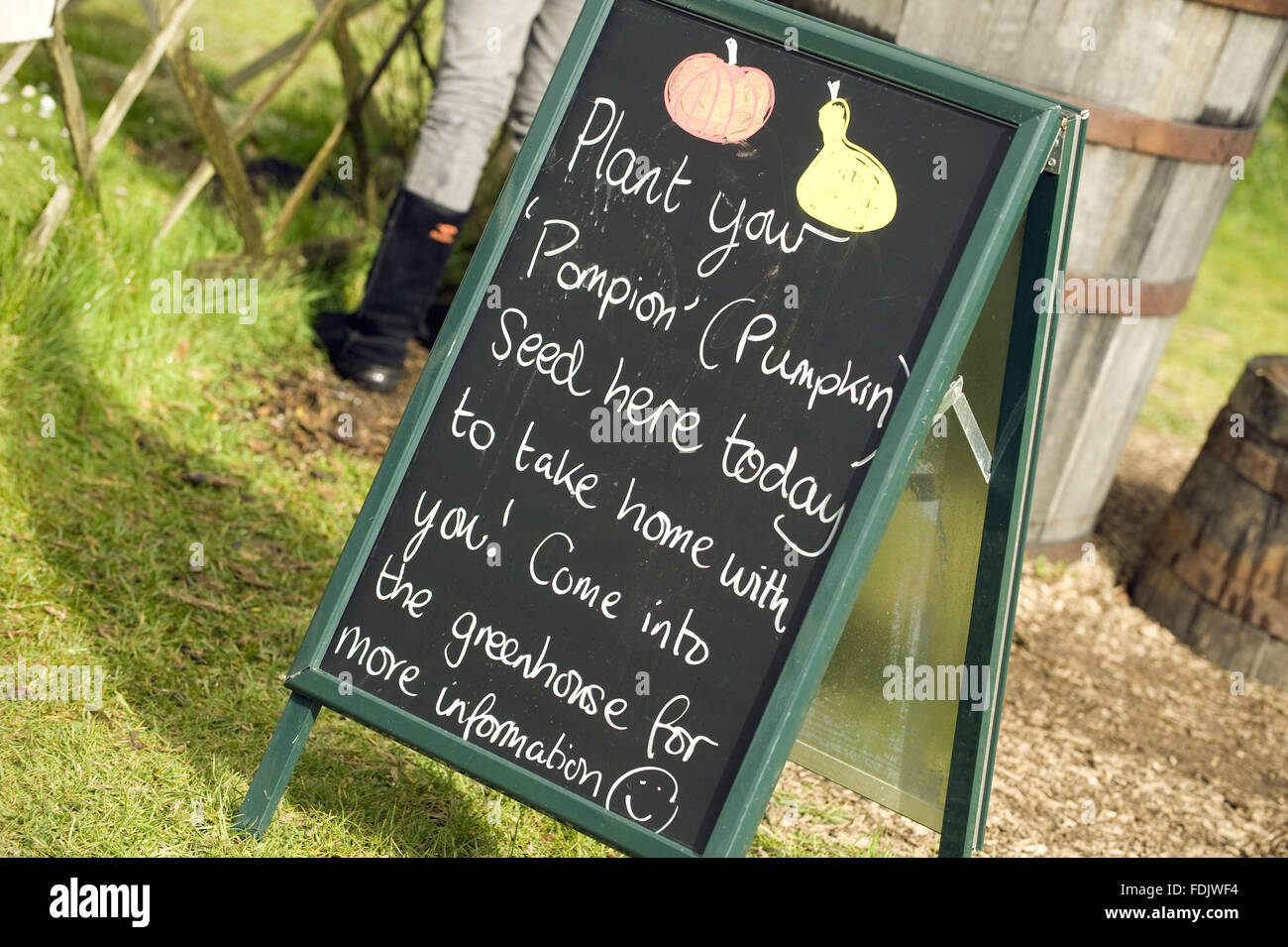 Sign about planting your own pumpkin seeds at Trerice, Cornwall, part of a Food Glorious Food event. - Stock Image