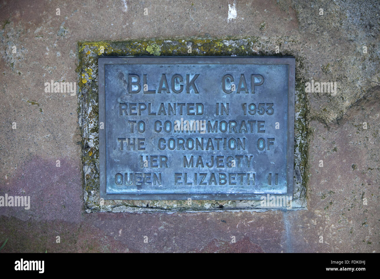 Commemorative plaque marking the coronation of Her Majesty Queen Elizabeth II in 1953 at Black Cap, South Downs, - Stock Image