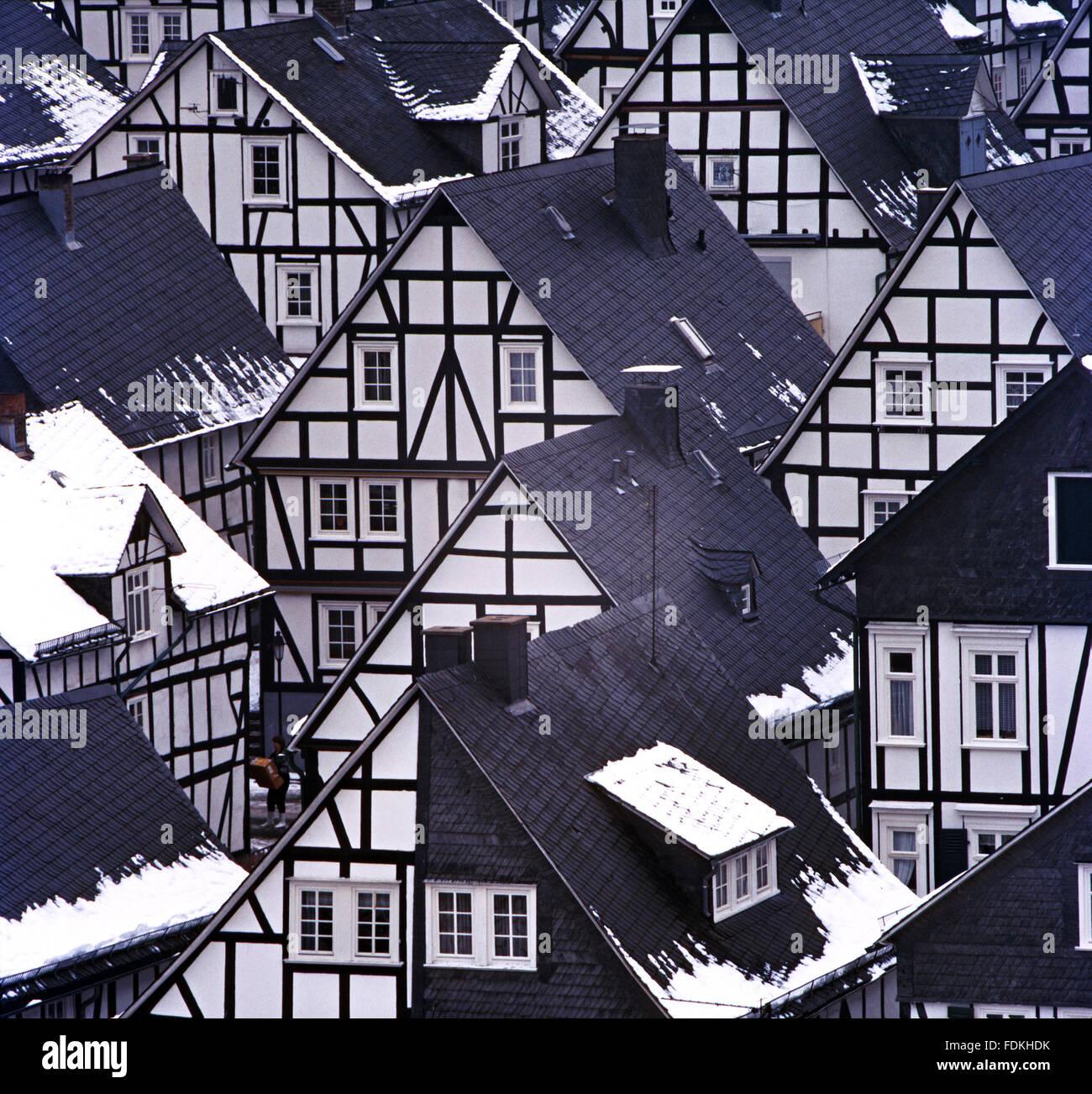 monotonically,timbered,freudenberg - Stock Image