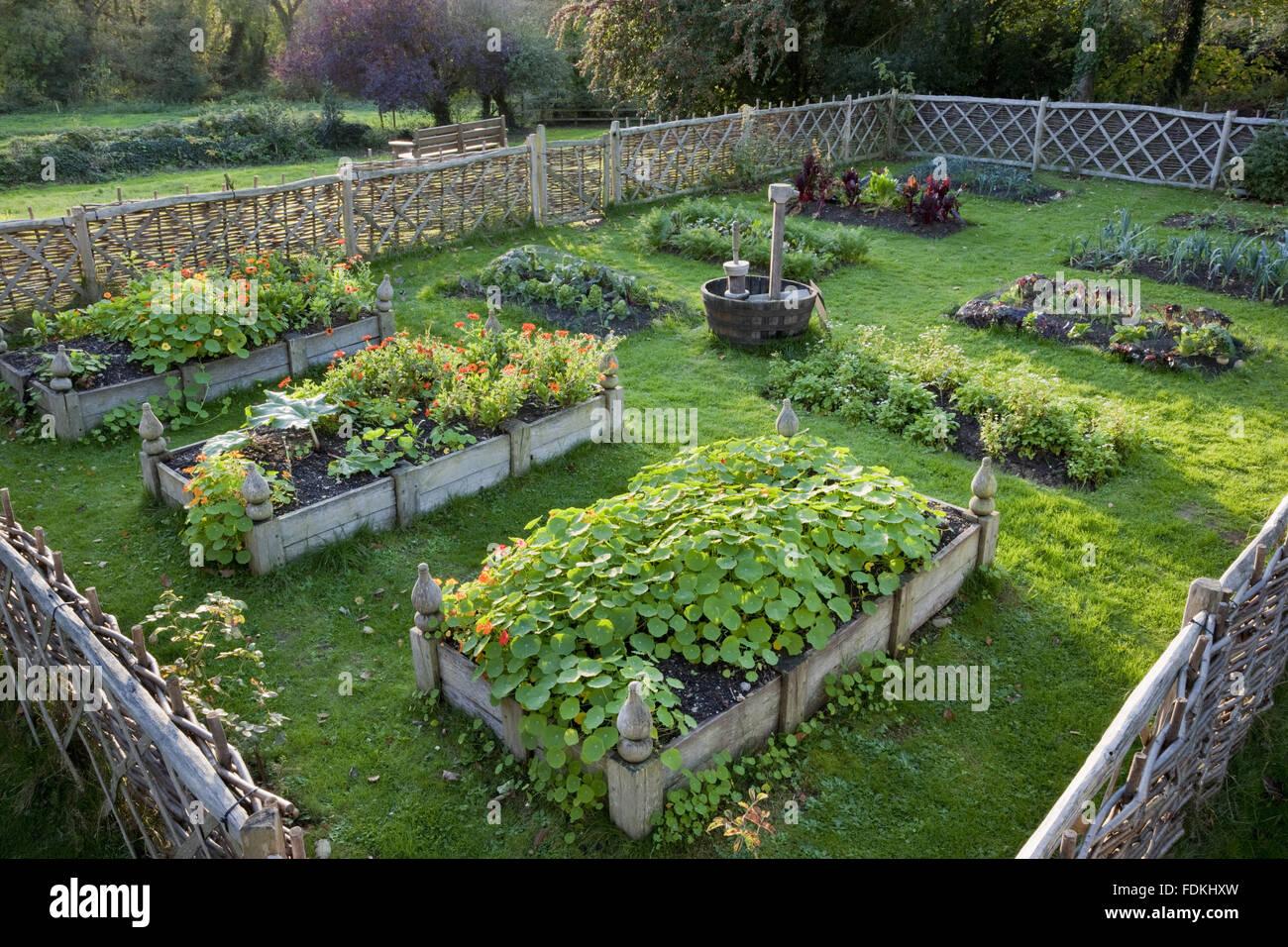 The Tudor Garden at Trerice, Cornwall. - Stock Image