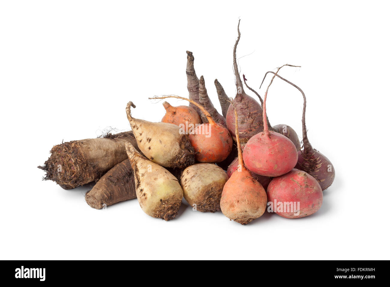 Variety of  multi colored beets on white background - Stock Image