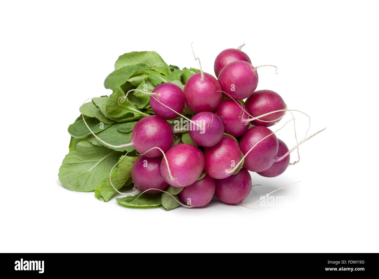 Bunch of fresh purple Radish on white background - Stock Image