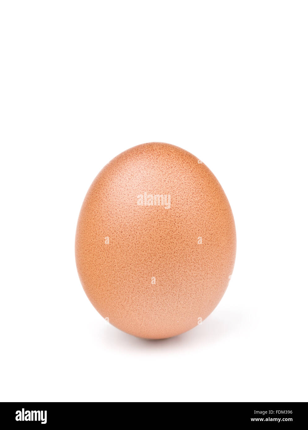 brown egg isolated on white - Stock Image