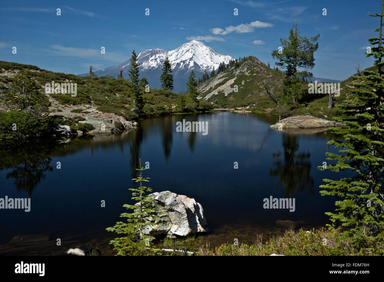 CA02651-00...CALIFORNIA - Mount Shasta from Heart Lake in the Shasta - Trinity National Forest. - Stock Image