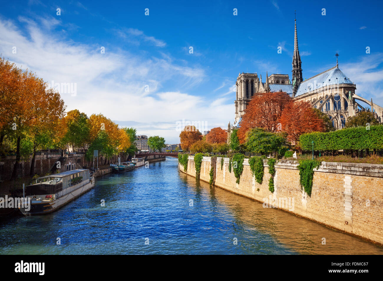 Notre Dame cathedral in Paris and  Seine river - Stock Image