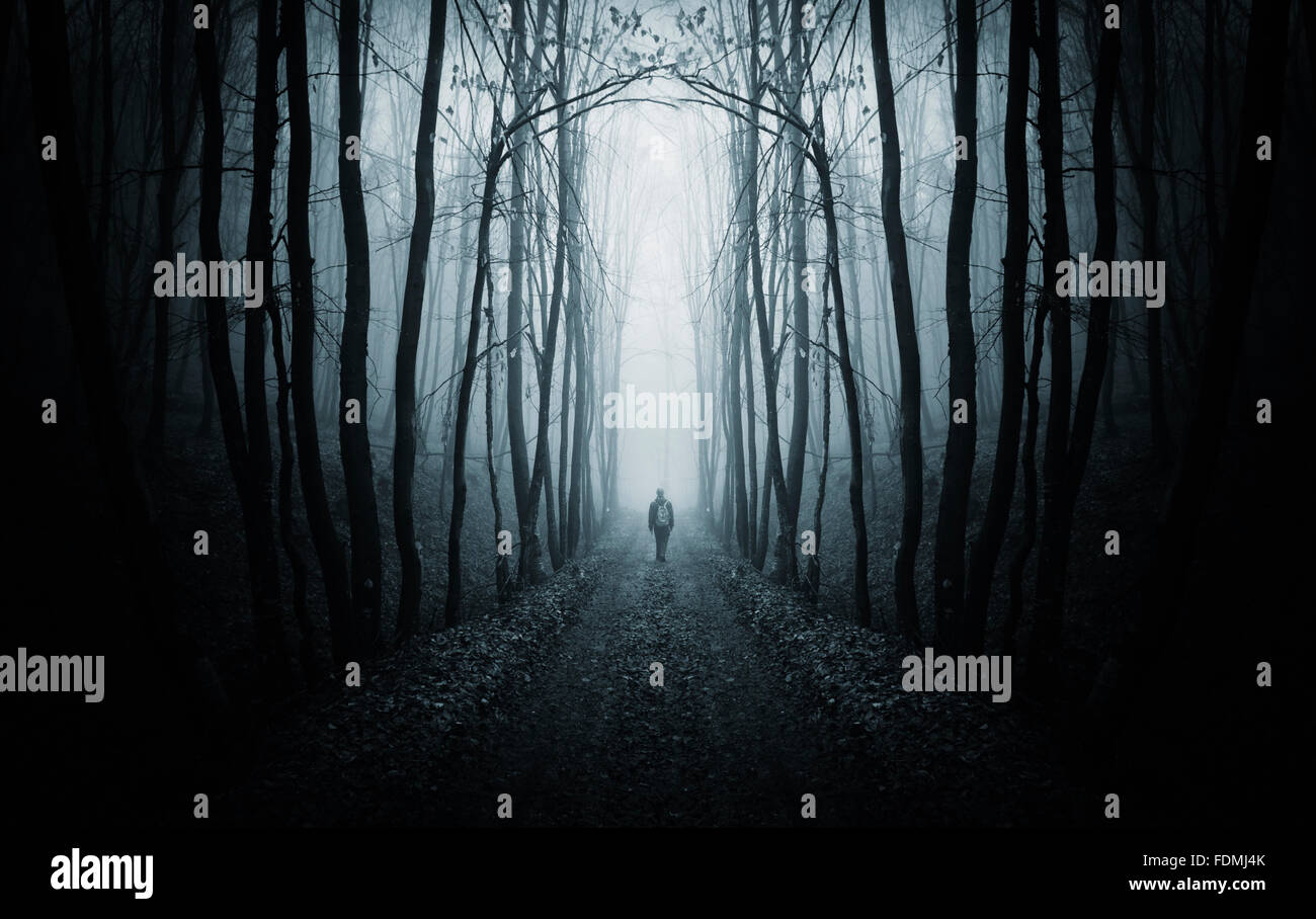 Man On Road In Surreal Dark Forest With Fog On Halloween Night Stock Photo Alamy