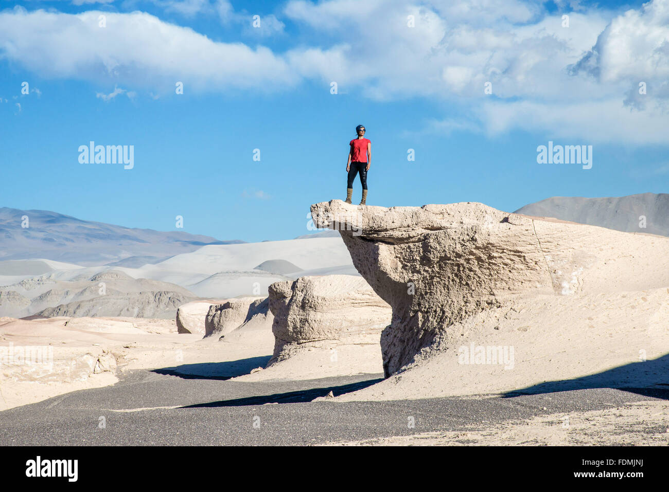 Ecotourist contemplating Fields Stone Pome - Antofagasta de la Sierra - Province of Catamarca - Stock Image