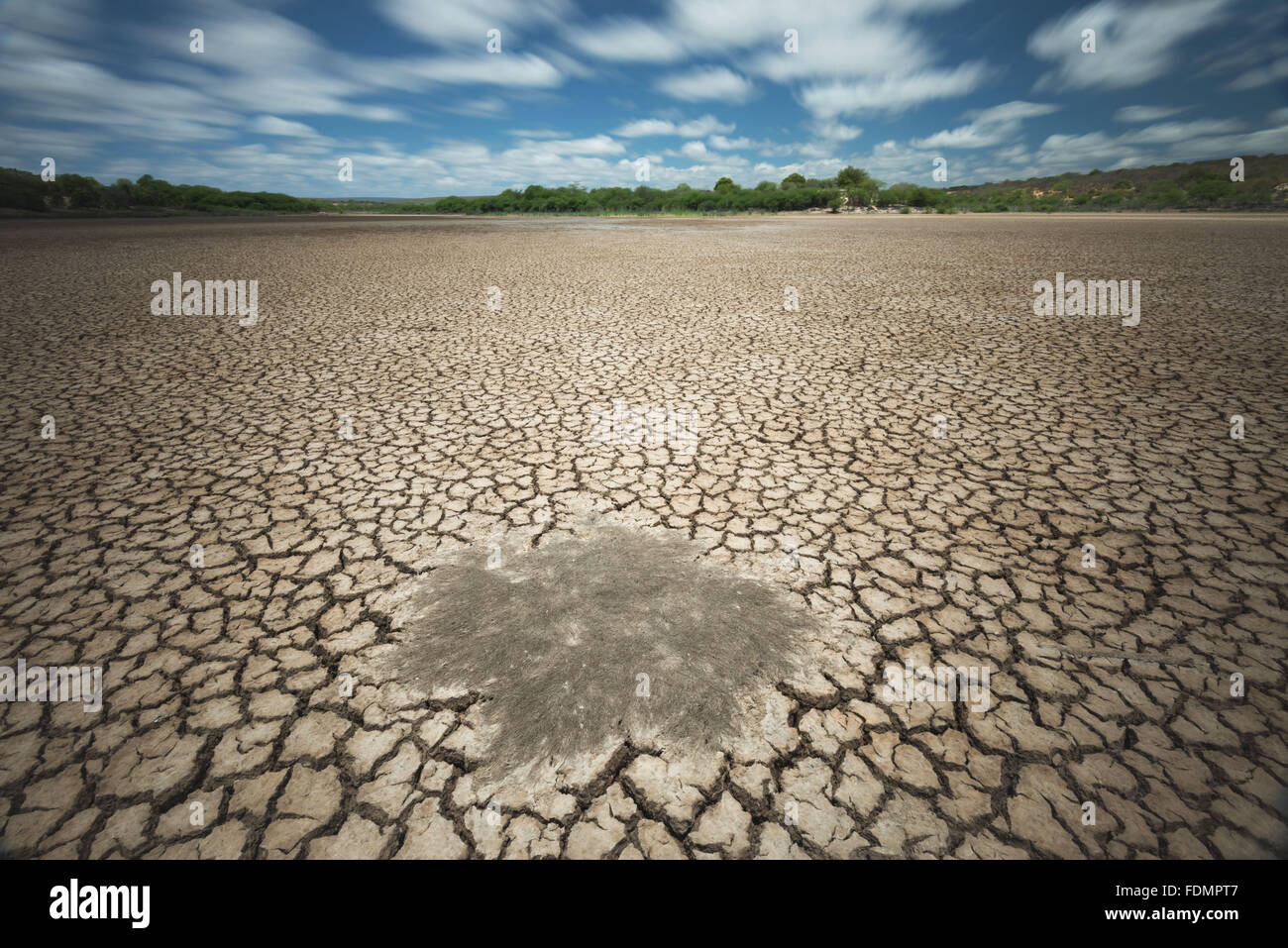 Pond Puiu in drought period - National Park Catimbau - Stock Image