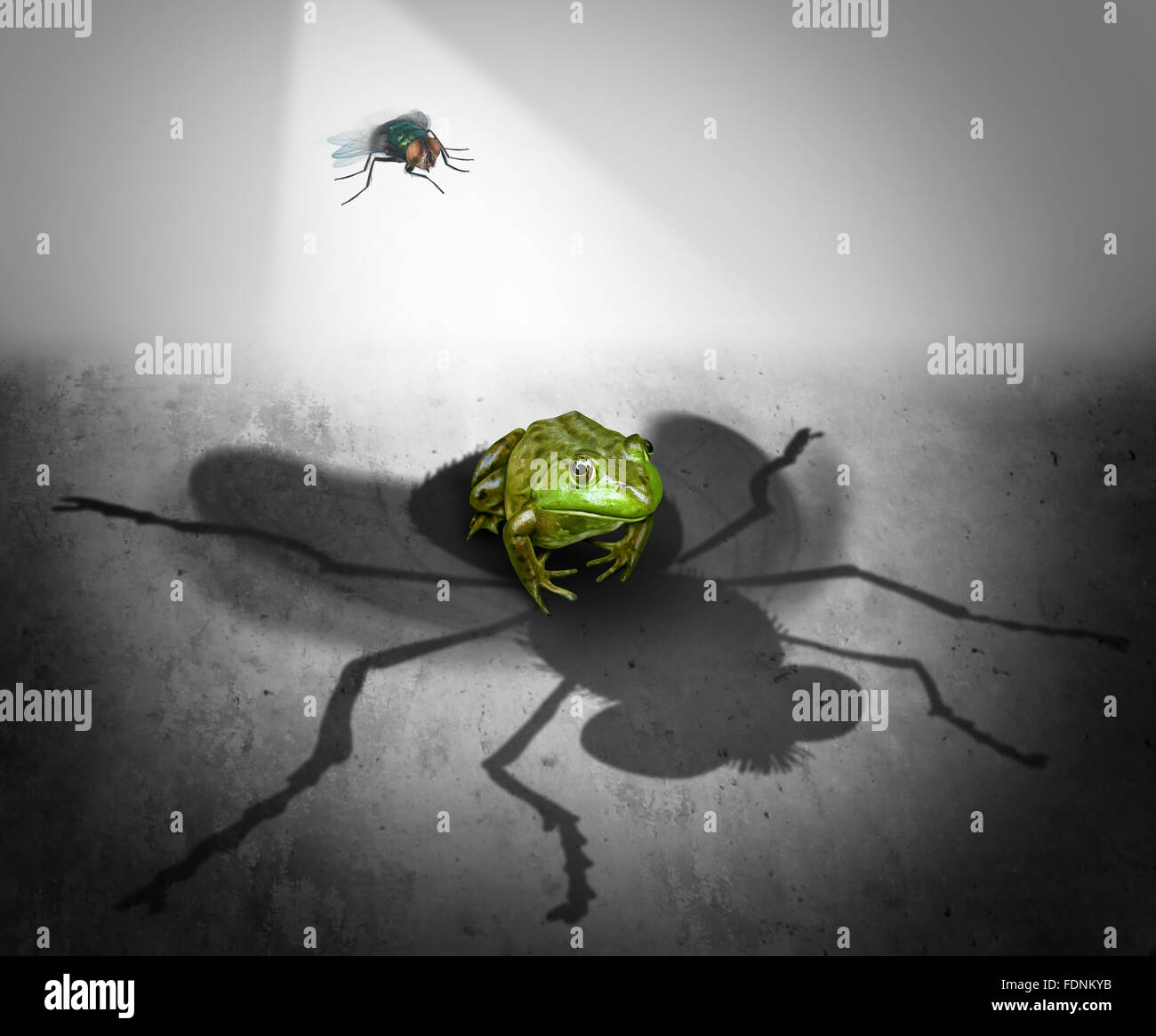 Perception and reality as the giant cast shadow of a small bug falling on a fearful frog as a psychological metaphor - Stock Image