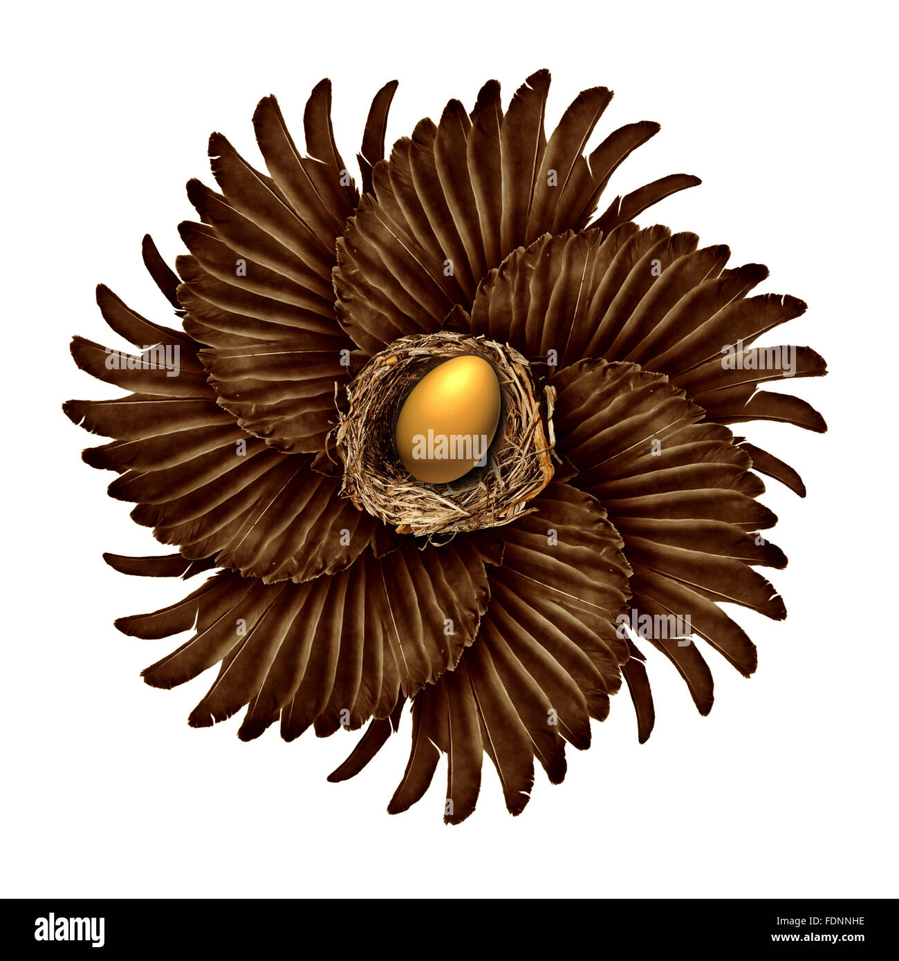 Life and creation concept as a group of bird wings shaped as a blossoming flower with a gold nest egg in the middle - Stock Image