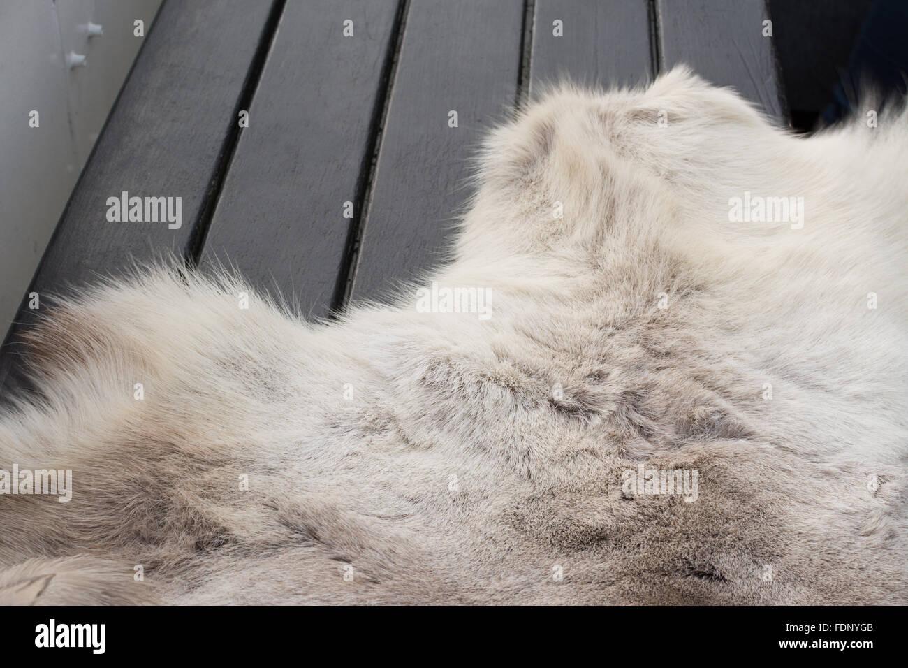 Close up of skin rug on bench on winter cruise boat, Stockholm, Sweden - Stock Image