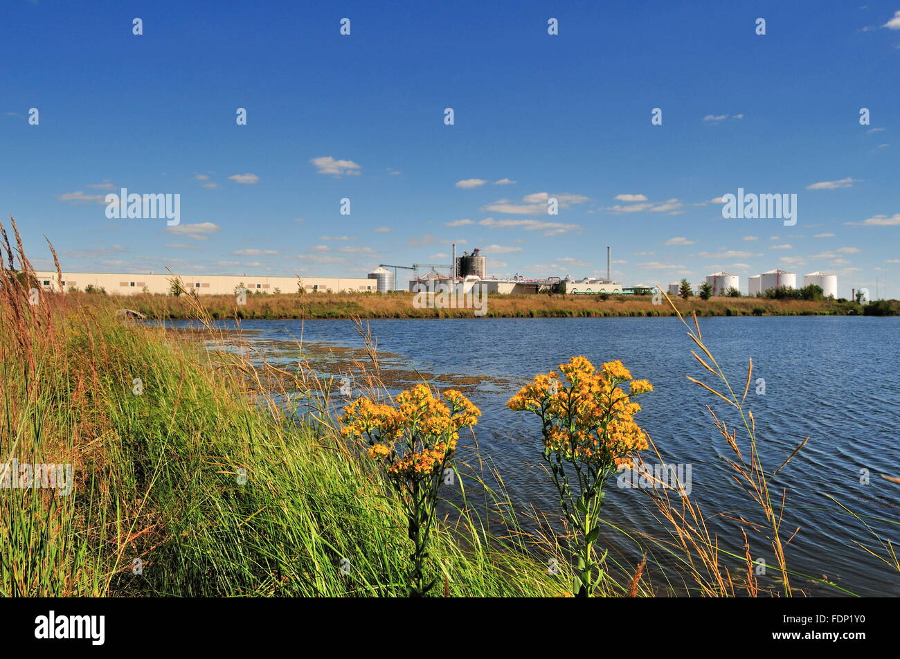 Prologis Park, an industrial park made up of warehouses, utility facilities and food processing plants in Rochelle, - Stock Image