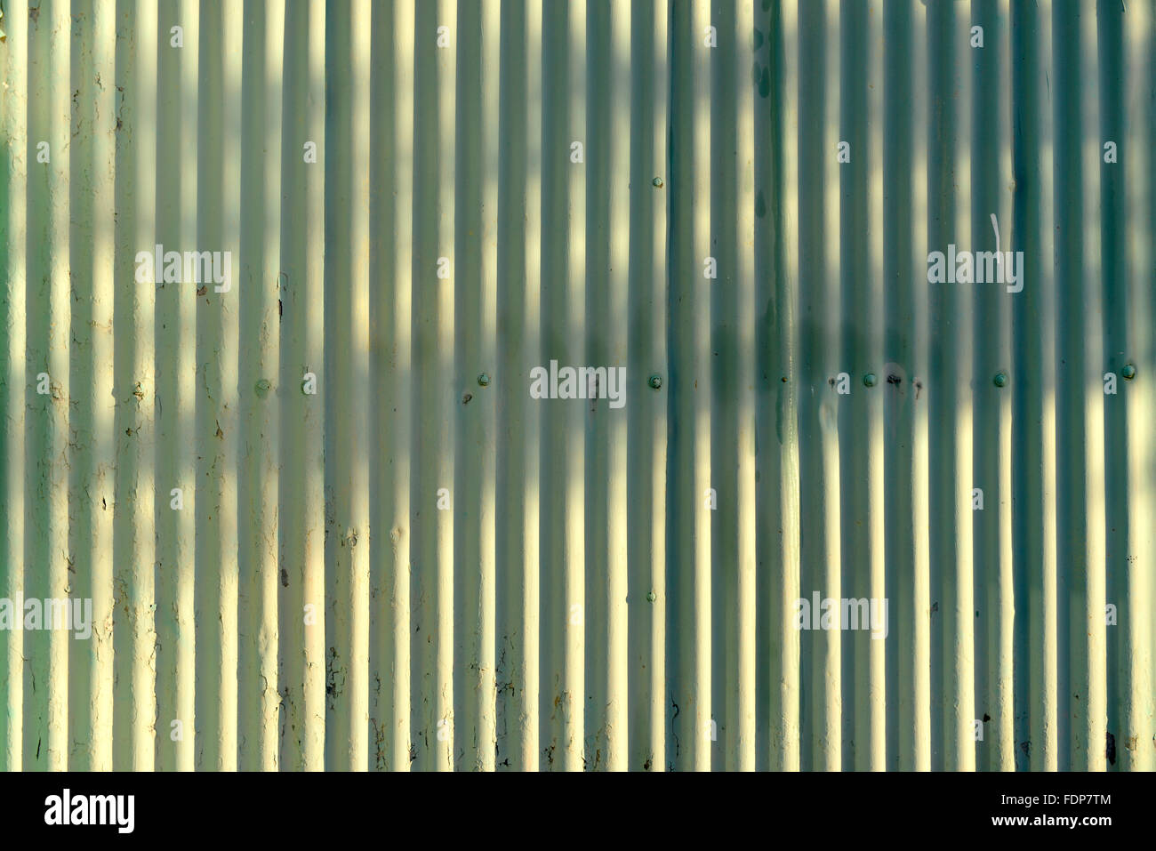 Green corrugated iron with rivets - Stock Image