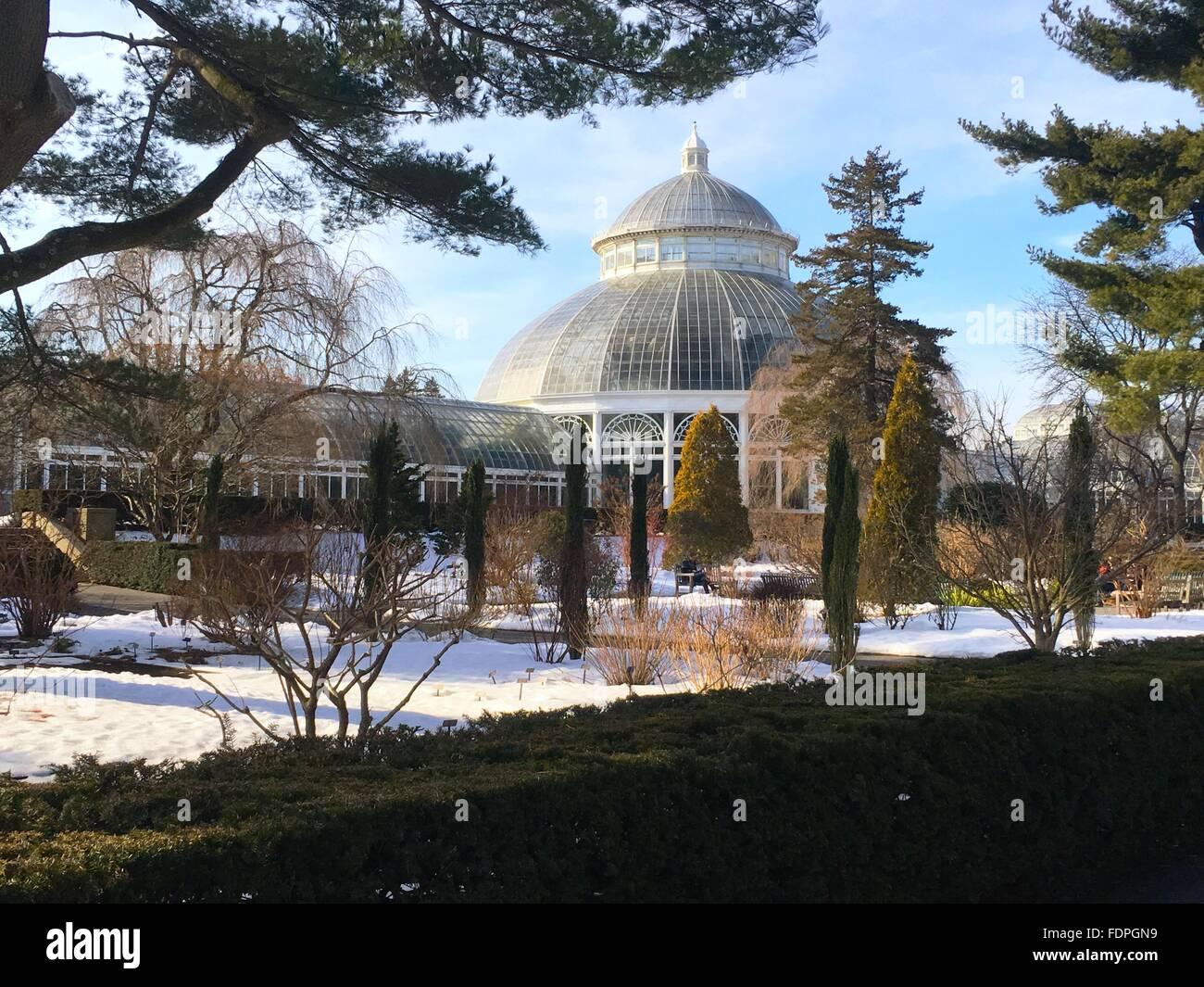 Greenhouse At The New York Botanical Garden Winter Scene Stock