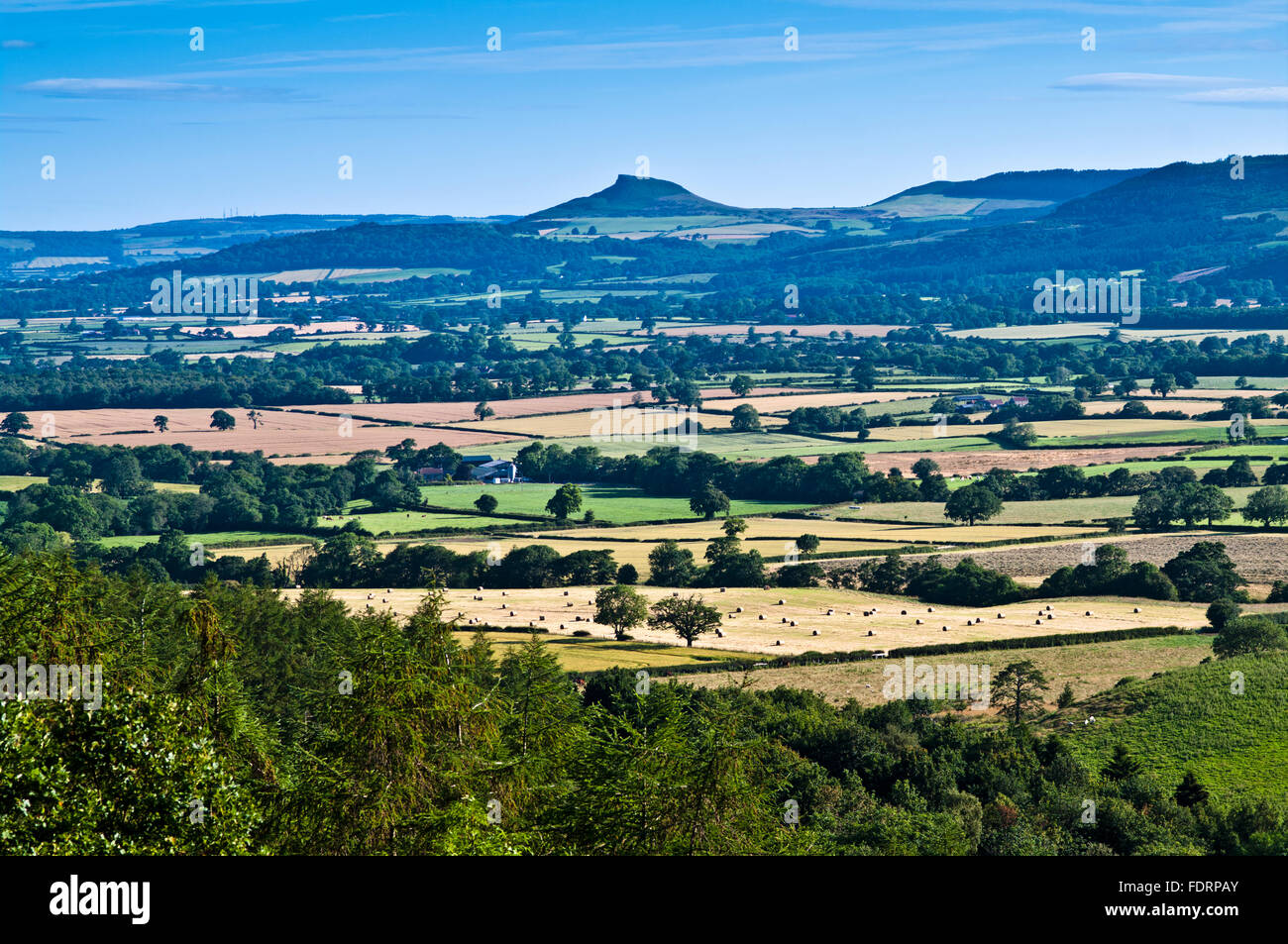 Summer view from Clay Bank across farmland in the vale to Roseberry Topping, North York Moors, Yorkshire, England - Stock Image