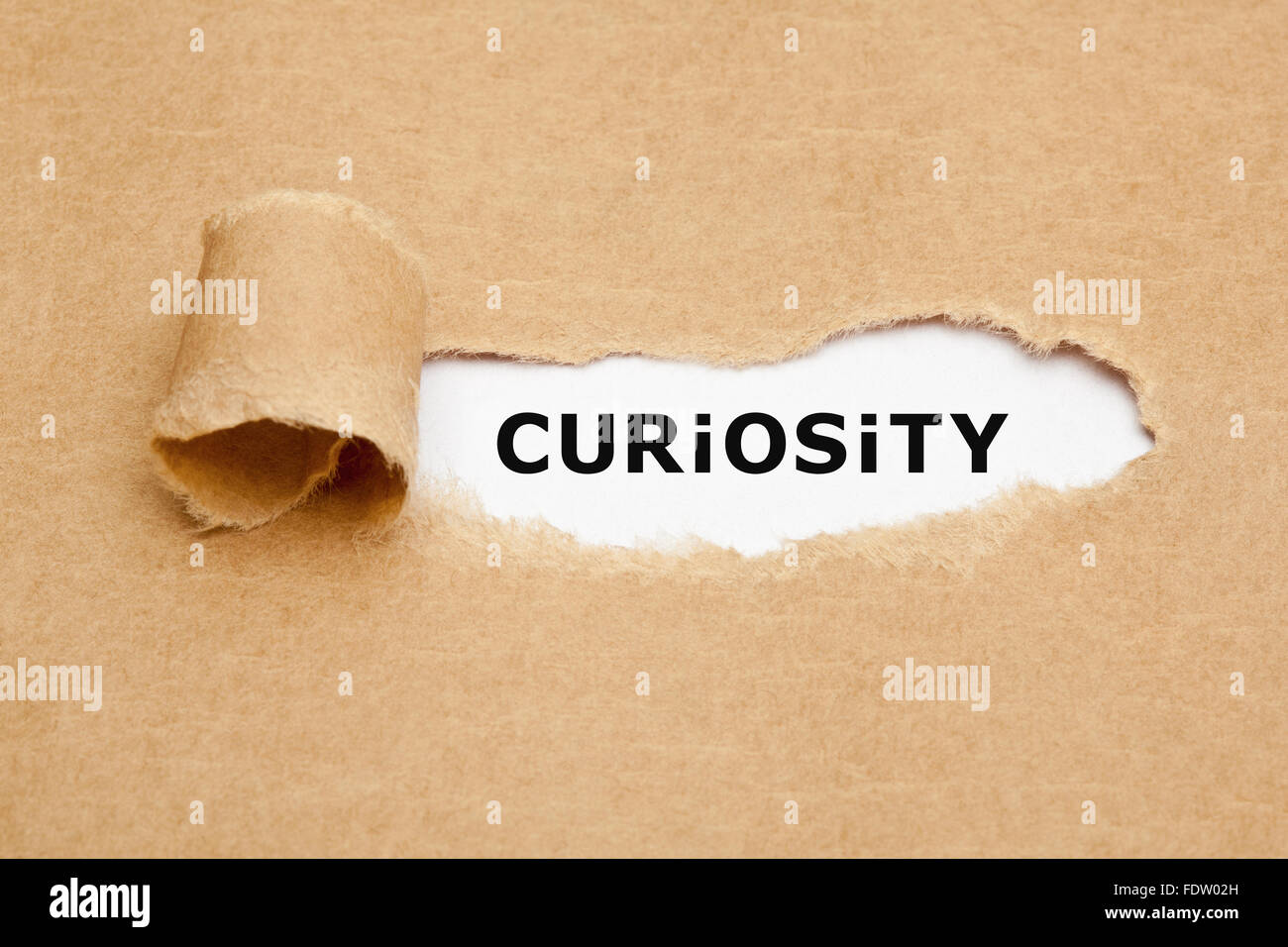 The word Curiosity appearing behind torn brown paper. Curiosity is the desire to learn or know more about something - Stock Image