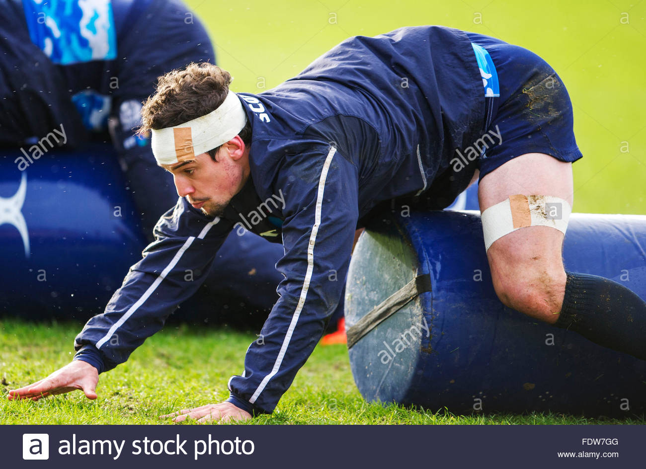 Edinburgh, Scotland, UK. 2nd February, 2016. RBS Six Nations Rugby. Scotland's John Hardie during the Scottish - Stock Image