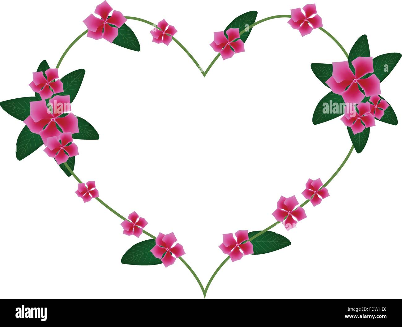 Love Concept, Illustration of Pink Cape Periwinkle, Bringht ...