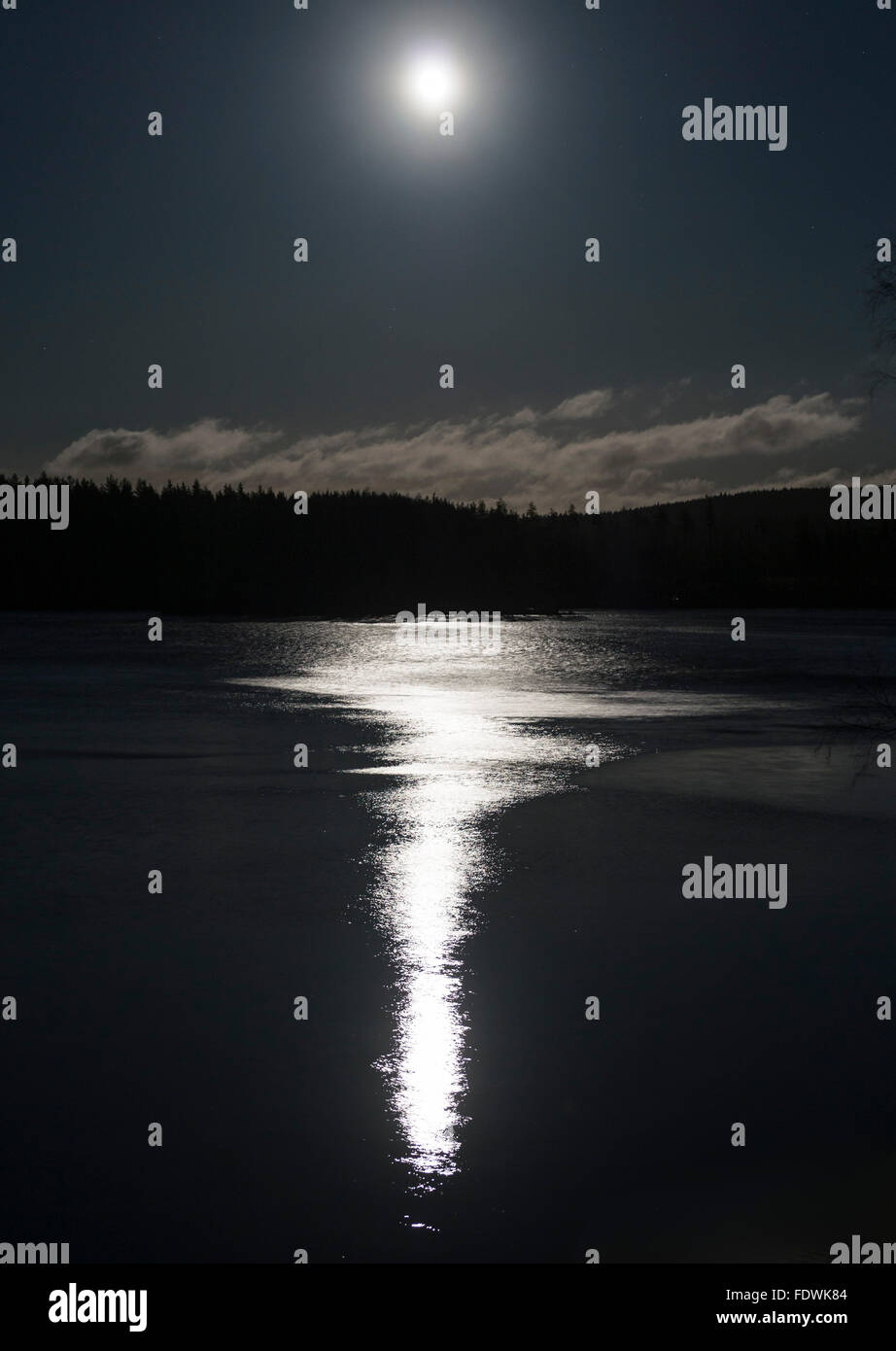 Moonshine Stock Photo