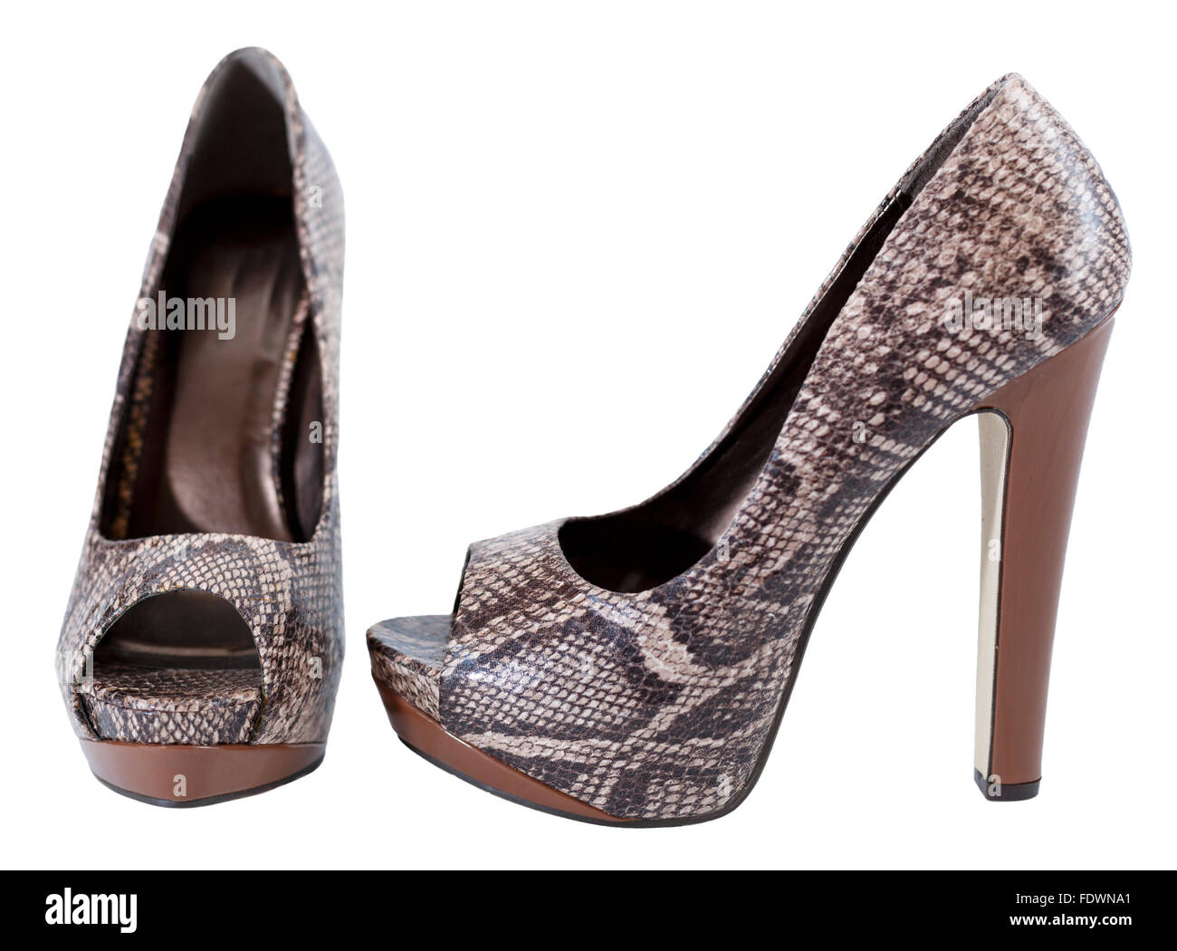 Snakeskin leather high heels stilettos pumps isolated on white background  Model Release: No.  Property Release: - Stock Image
