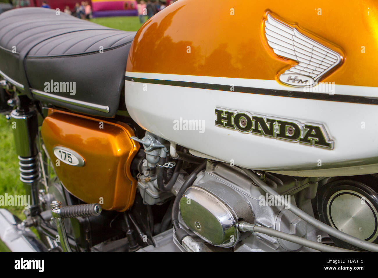 Cb 175 Stock Photos Images Alamy 1971 Cb175 Wiring Diagram Close Up Of The Side A Gold Honda Motorcycle Image