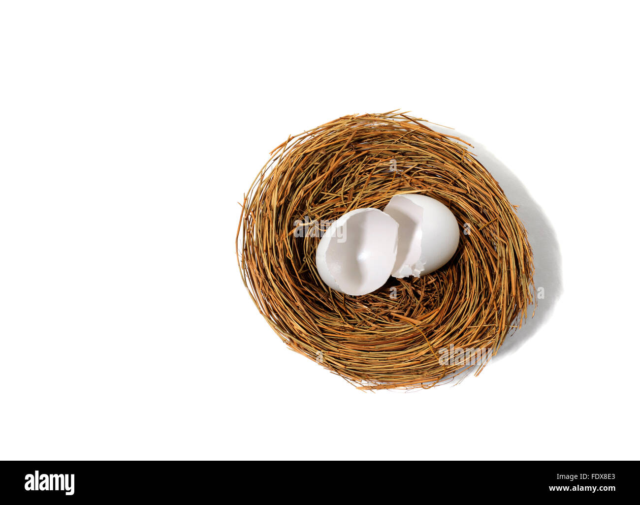 Studio shot of a Empty bird's nest with broken egg - Stock Image