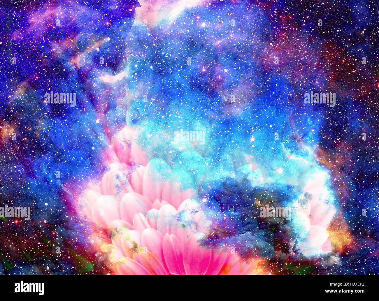 Space and stars with flower, color galaxi background ...