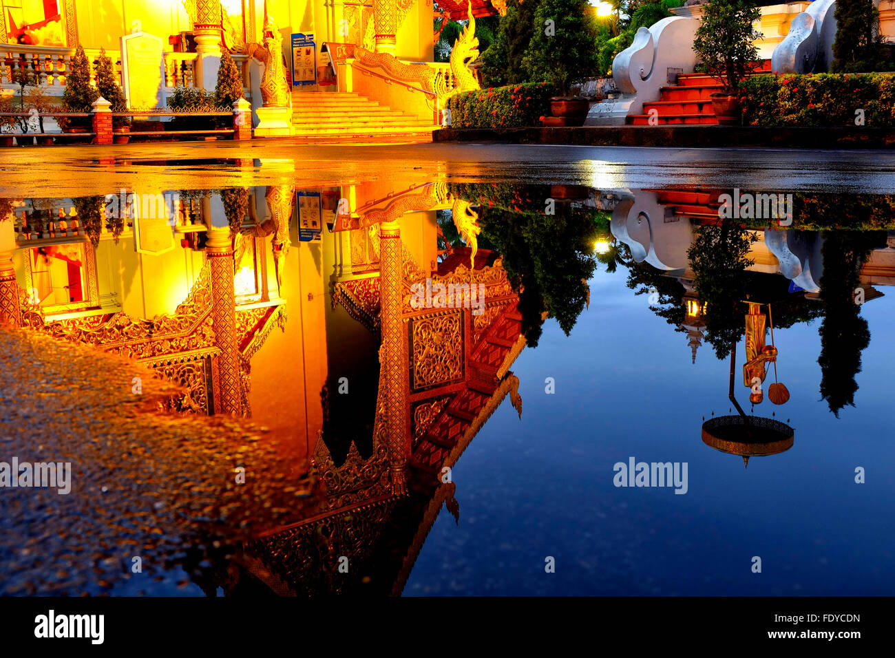 Reflection of the Wihan Luang of Wat Phra Singh in the water of a puddle, Chiang Mai, Thailand - Stock Image