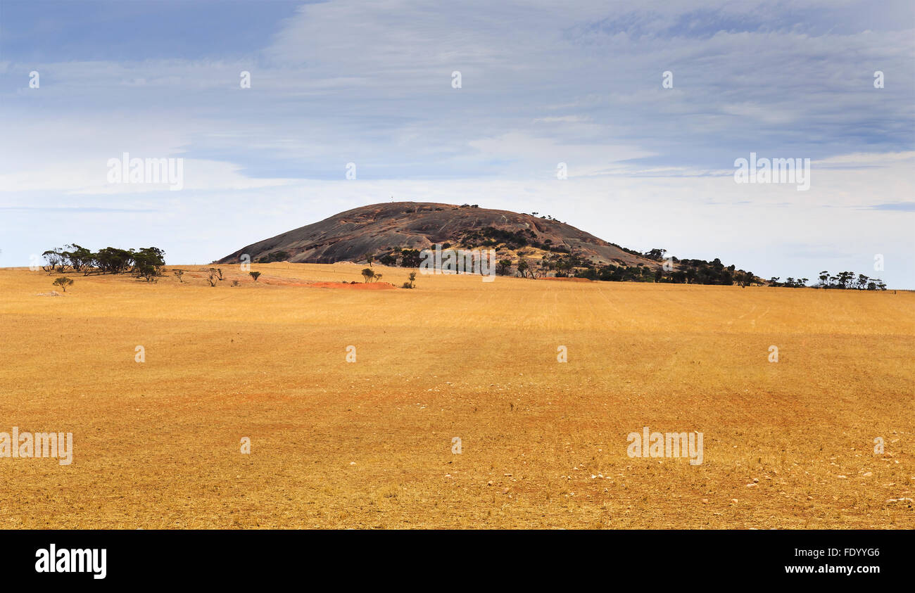distant layout of granite mountain of Wudinna national park surrounded by cultivated agricultural fields of wheat Stock Photo