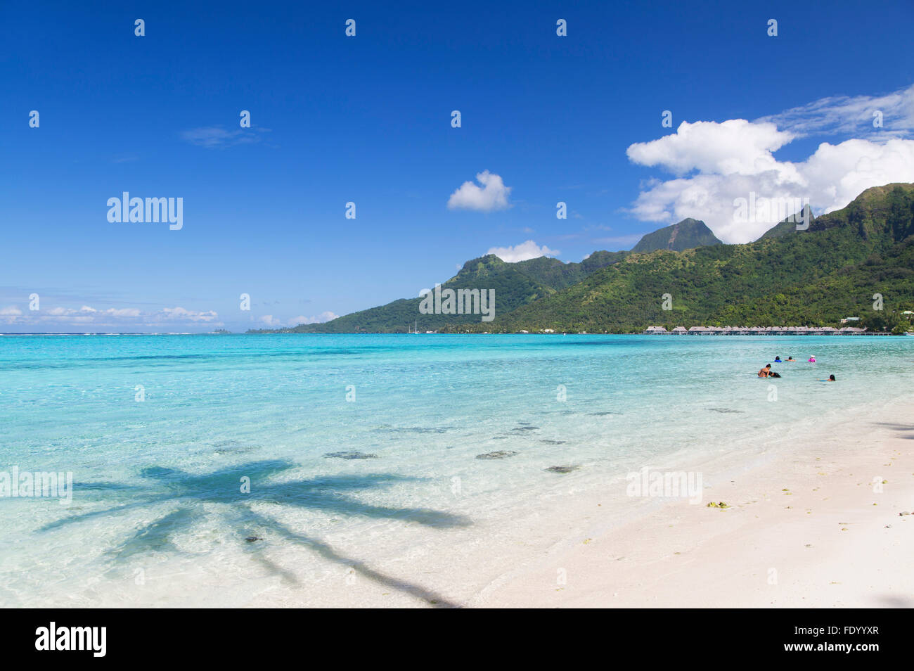 Temae Beach Moorea Society Islands French Polynesia Stock
