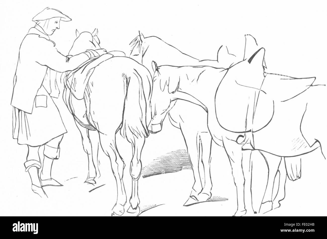 HORSES: Highlander & Ponies-Landseer, antique print c1880 - Stock Image