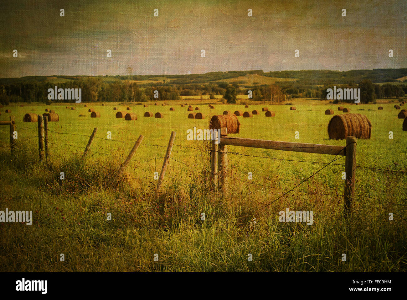 Rural Alberta farmland with a painterly vintage effect and texture. - Stock Image