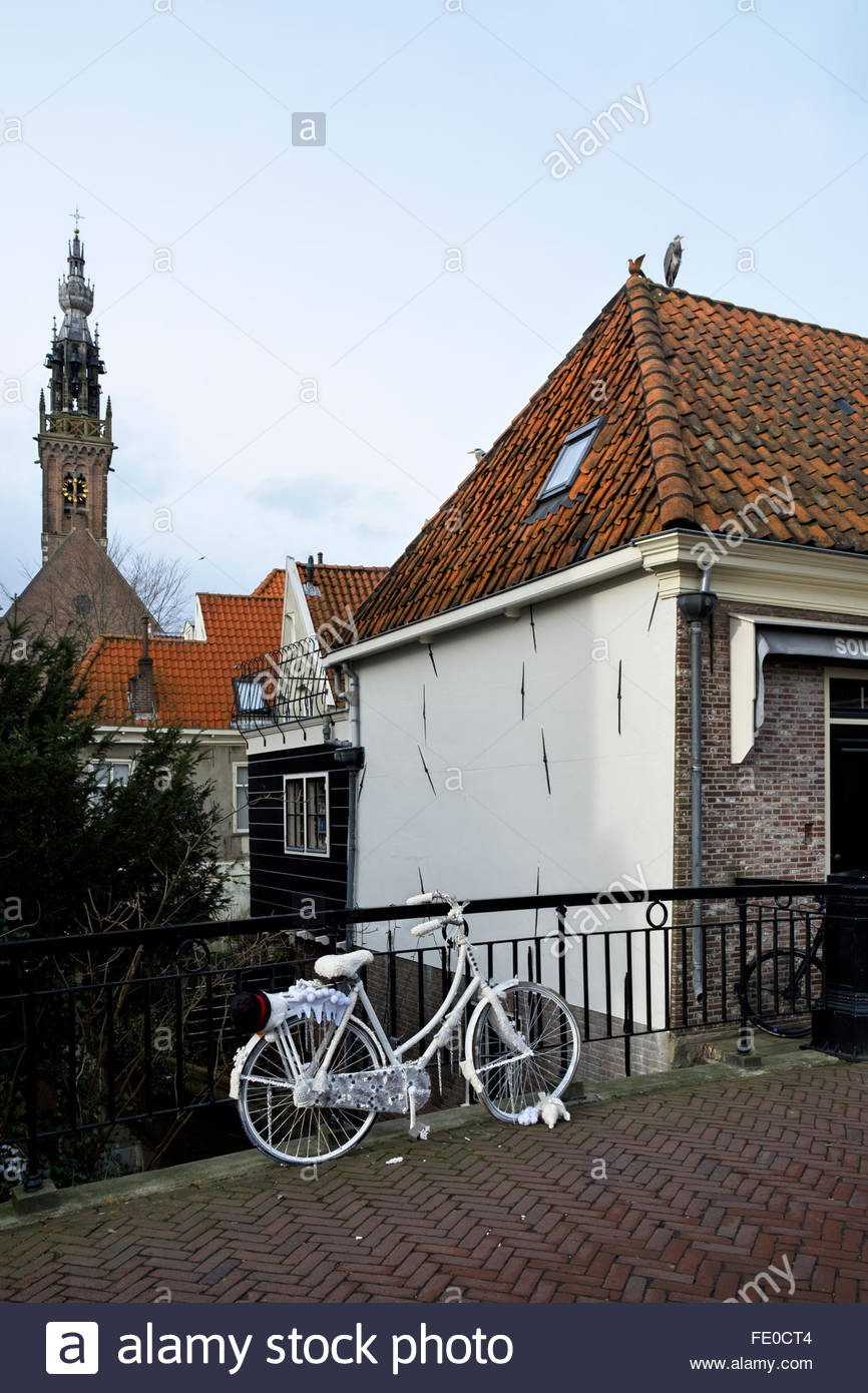 The Speeltoren of the Kleine Kerk, herons relaxing on a tile roof, and a decorated bicycle in foreground. - Stock Image
