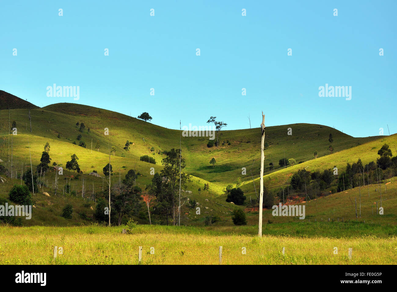 Rolling hill of Mt. Barney National Park under blue sky - Stock Image
