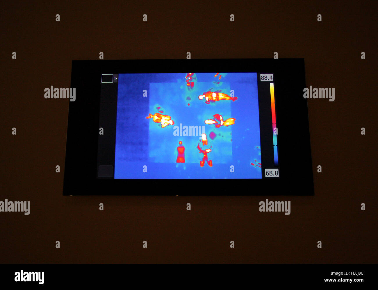 New York City, NY, USA. 3rd February, 2016. Thermal images of visitors lying on a bed like platform,  are part of - Stock Image