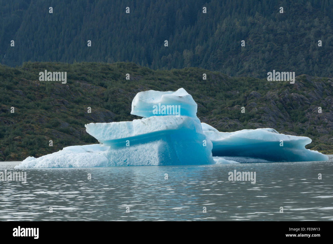 Teddy bear shaped blue iceberg in front of green forest at Mendenhall Glacier area in Juneau, Alaska - Stock Image