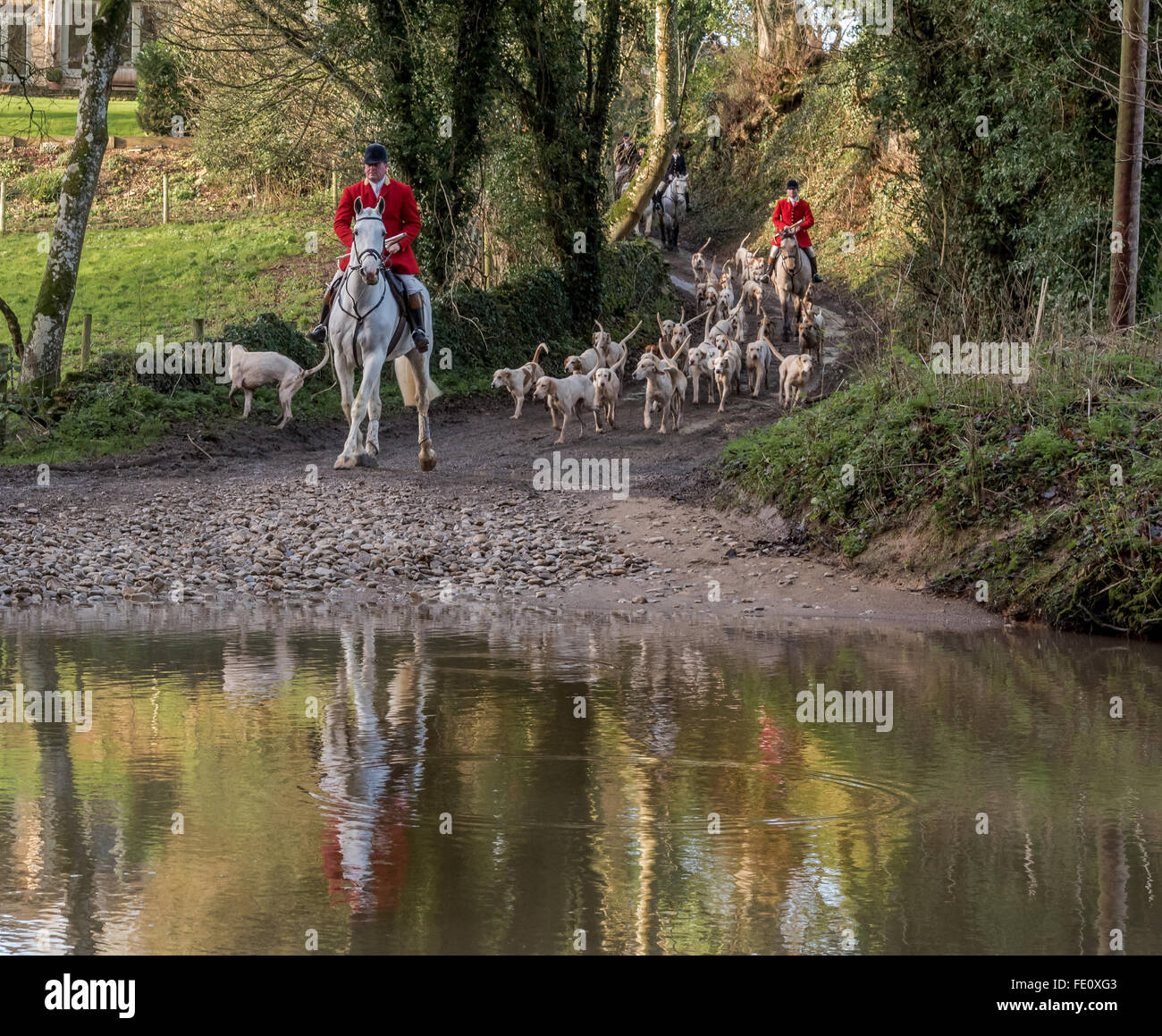 North Cotswold Hunt on Christmas Eve crossing a ford - Stock Image
