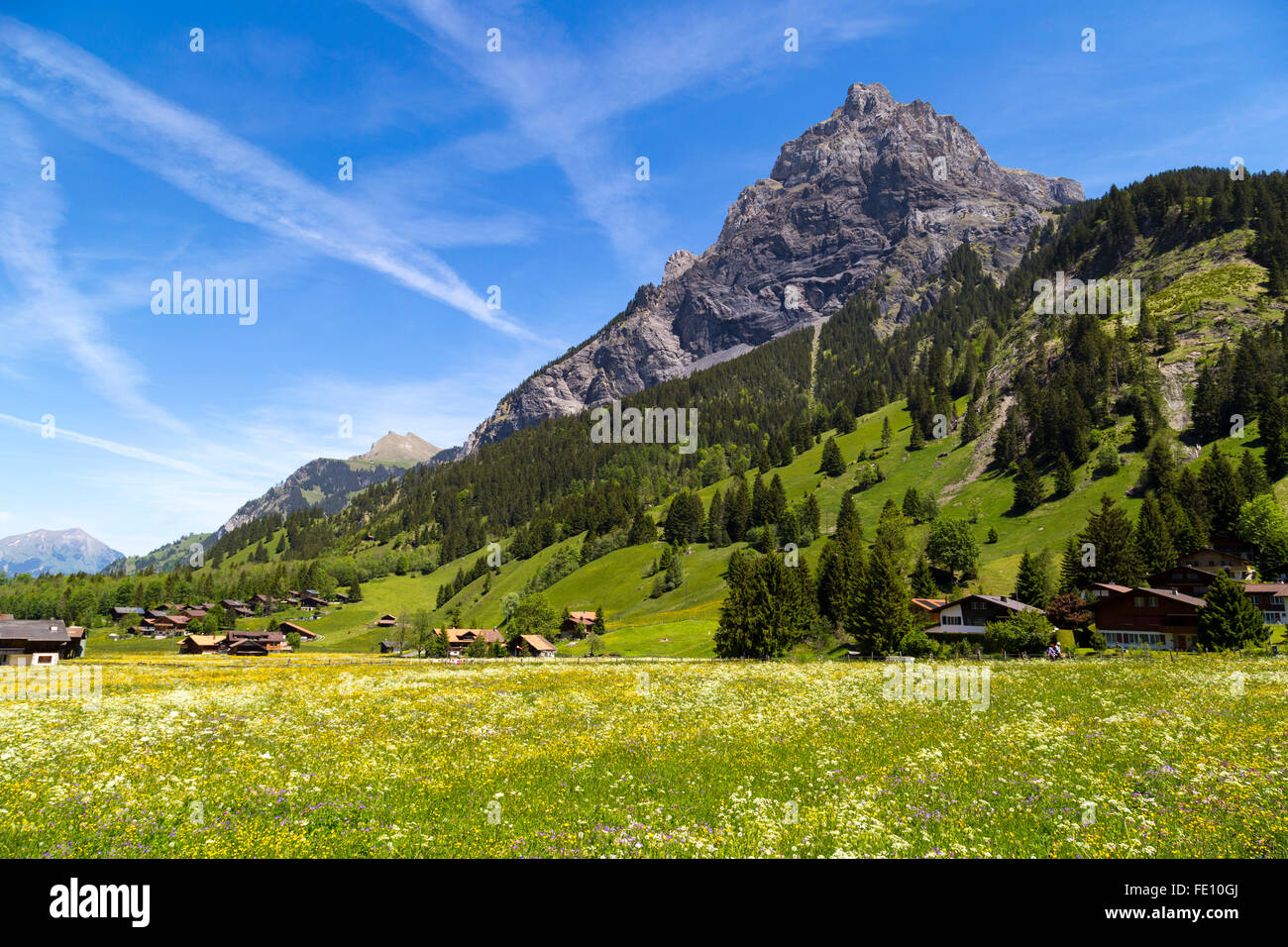 Panorama view of the Alps and Bluemlisalp on the hiking path near Kandersteg on Bernese Oberland in Switzerland - Stock Image