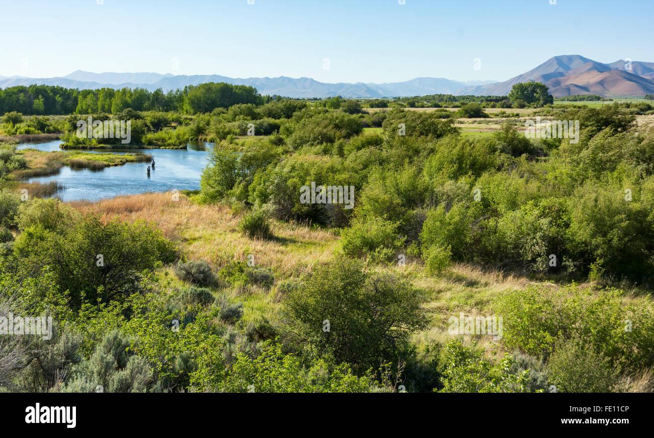 Idaho, Bellevue, Silver Creek Preserve, fly fishermen trout fishing - Stock Image