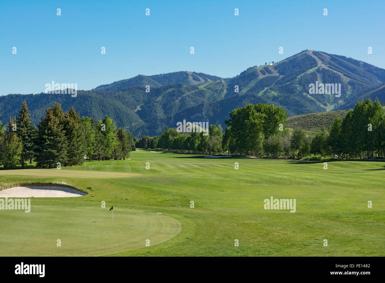 idaho, sun valley golf course, summer, bald mountain stock photo