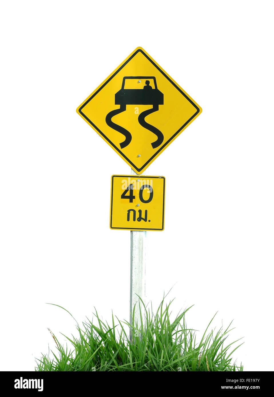 Yellow slippery road sign and green grass isolated on white background - Stock Image