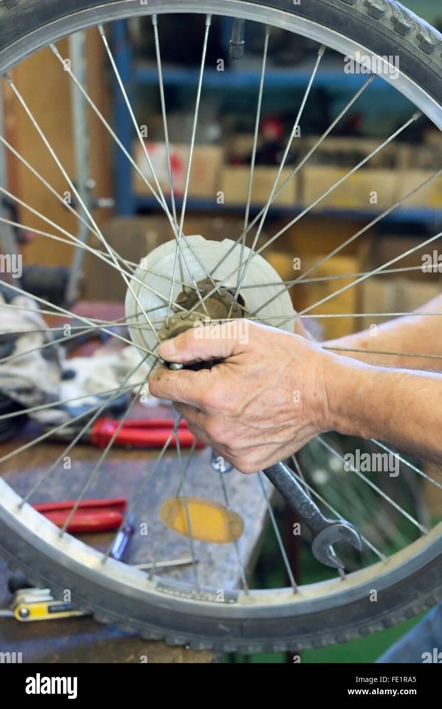 Repair bicycle - Stock Image