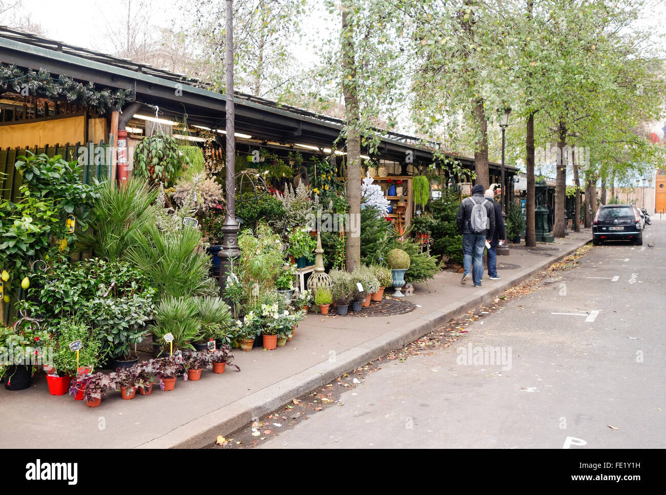 Flowers and birds Market on Place Lepine,  Île de la Cité, Paris, France. - Stock Image