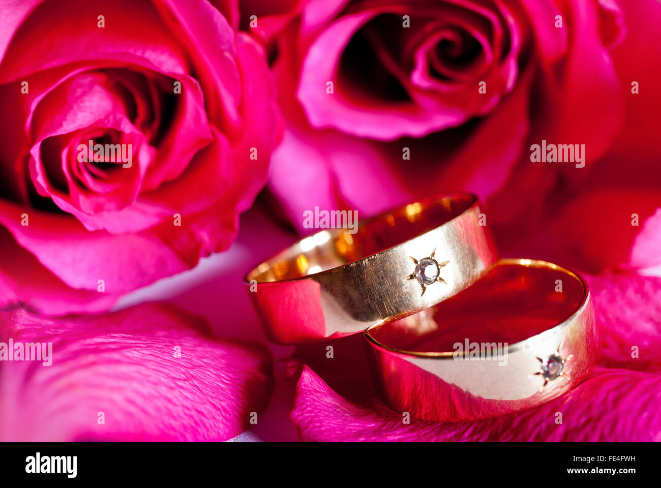 Ring Rose Stock Photos & Ring Rose Stock Images - Alamy