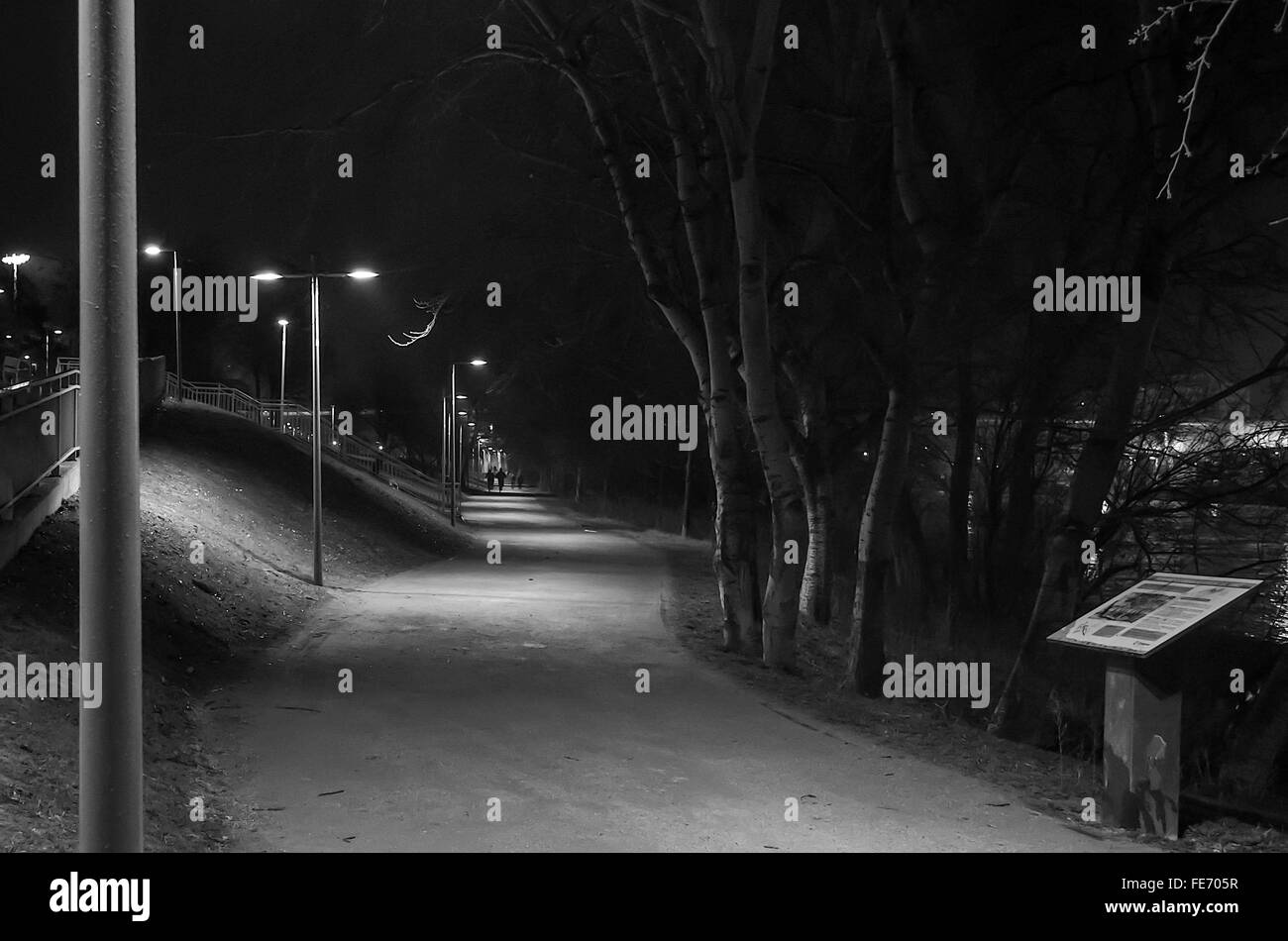 Footpath By Trees At Night - Stock Image