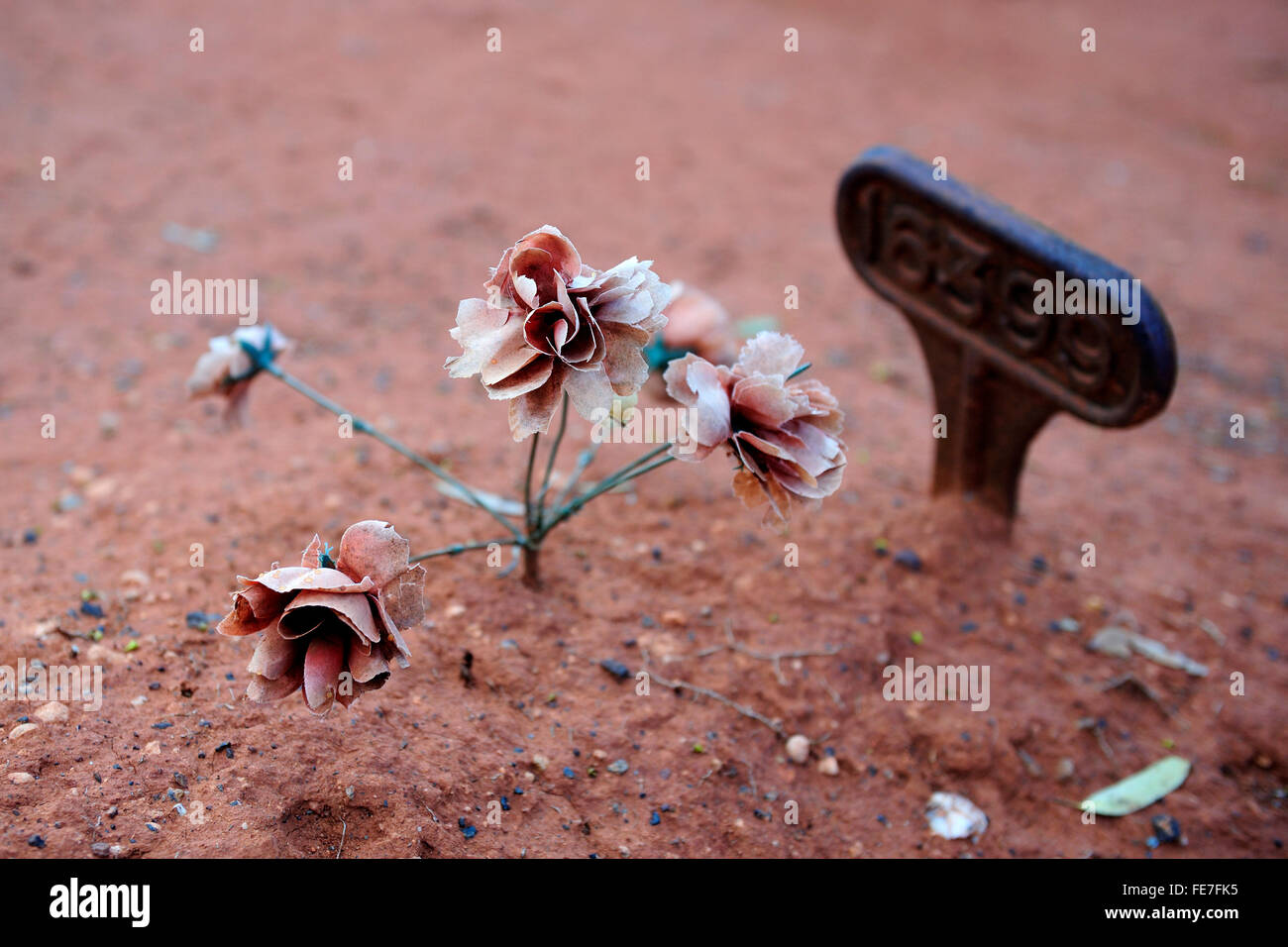 Faded artificial flowers on old, forgotten, un-named child's grave - Stock Image