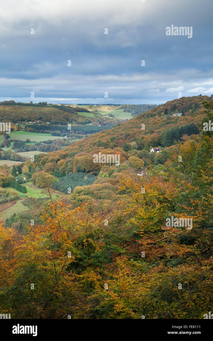 An elevated view of the Wye Valley and into the Forest of Dean displaying autumn colours near Llandogo, Monmouthshire, - Stock Image