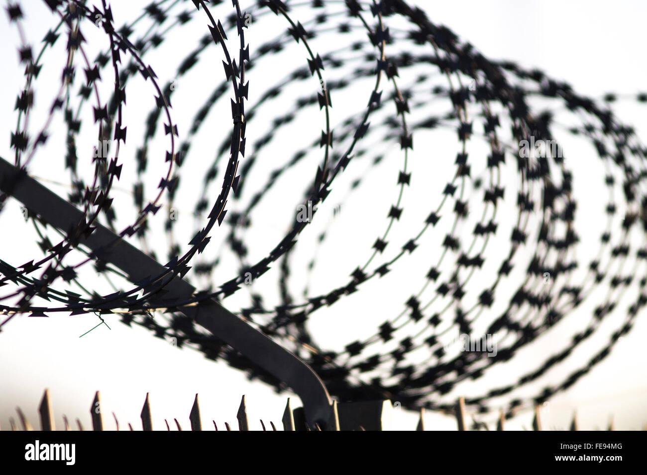 razor wire fence - Stock Image