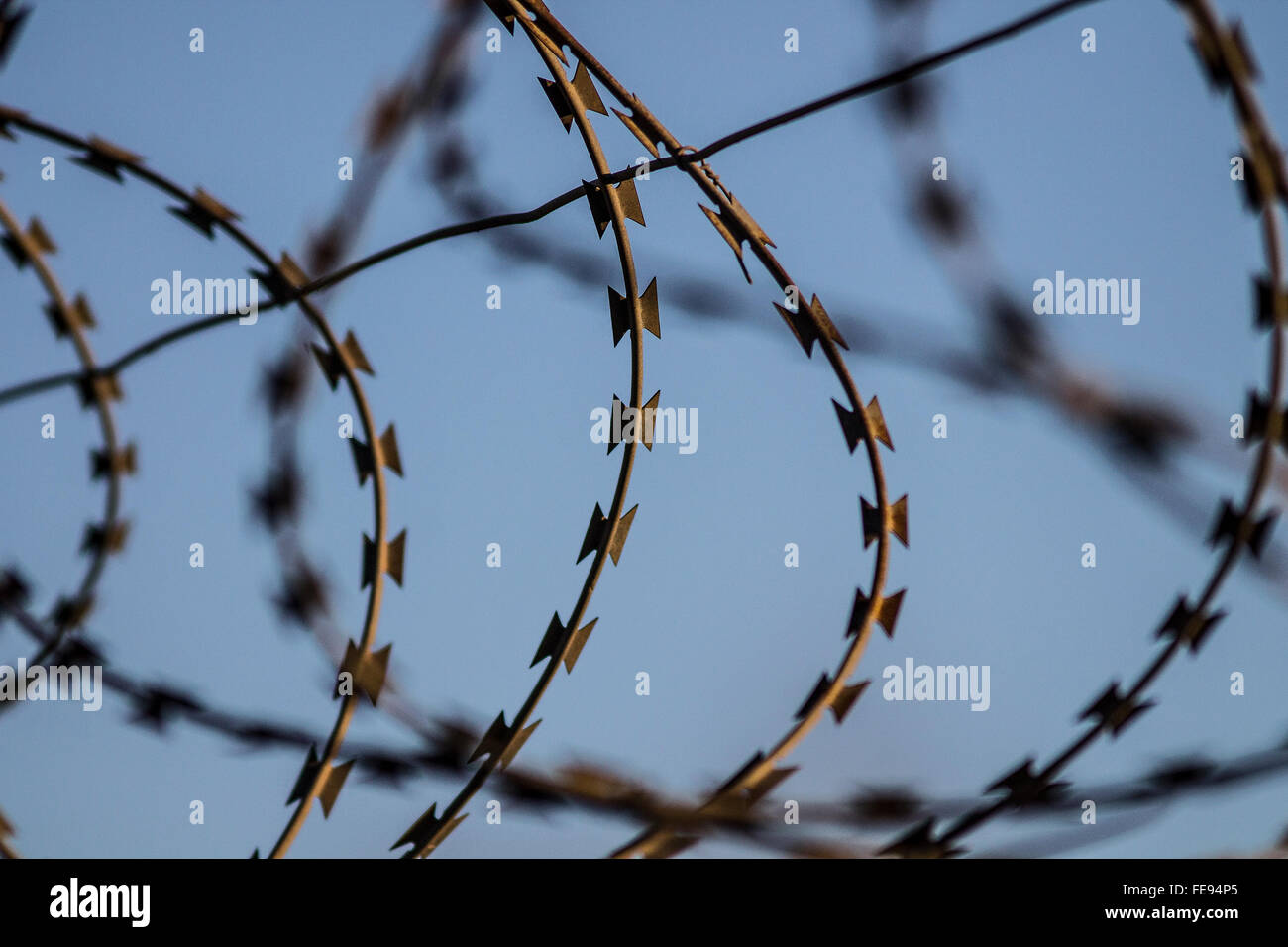 Razor wire against a light blue sky - Stock Image
