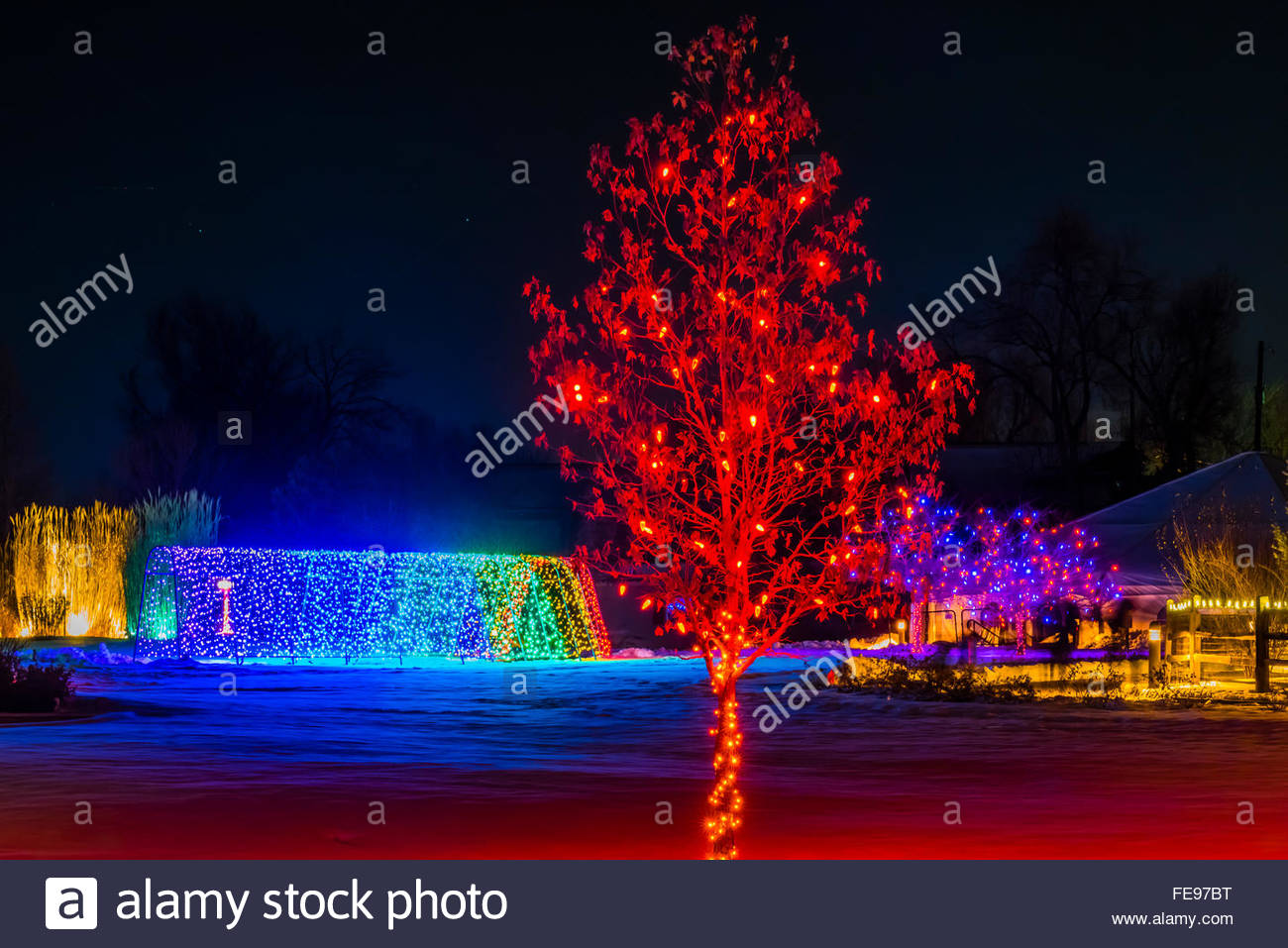 A Tunnel Of Lights A Hudson Christmas Holiday Light Show At